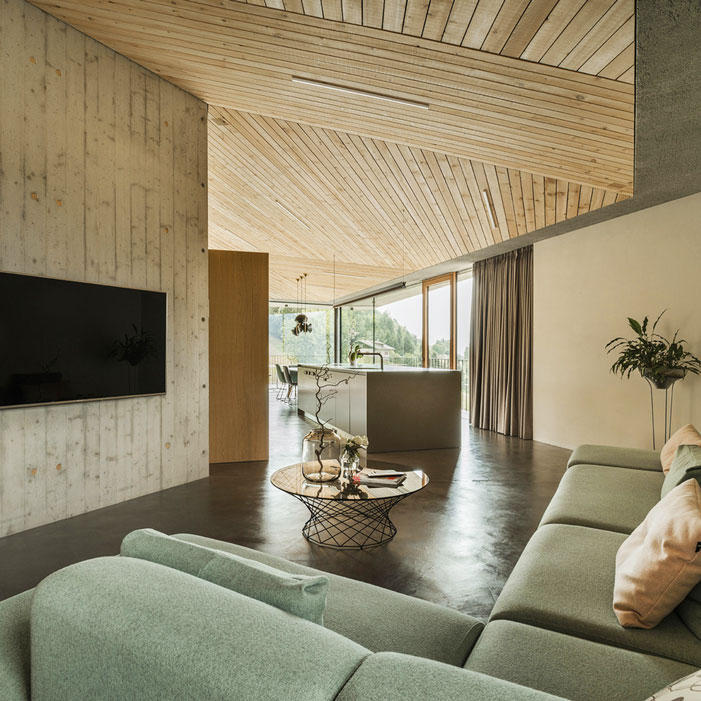 House-on-the-Hill-wood-ceiling-MoDusArchitects-221